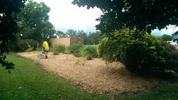 Round About Garden After