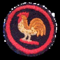 Bantam Patrol Badge