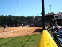 Foul line, I wonder if the umpire can see it?
