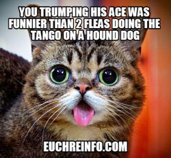 You trumping his ace was funnier than 2 fleas doing the tango on a hound dog.