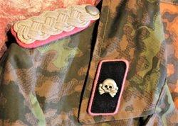 Heer Panzer Officer in Waffen-SS Gear.