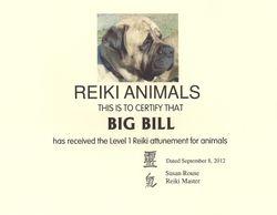 Big Bill the Reiki Dog