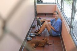 Ann sitting with Tassie and Busta