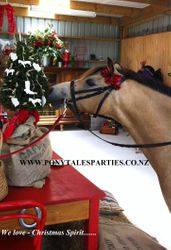 Spirit looking at the Christmas Decorations made for the children