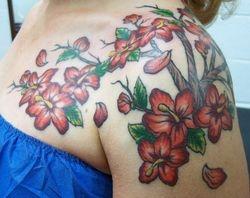 Estella's Hibiscus Branch