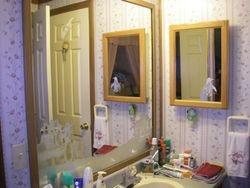 Penguins Bathroom Mirror