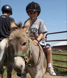 Little one riding Mudpie the mini-donkey