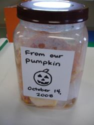 Our pumpkin science