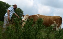 Clive and cow