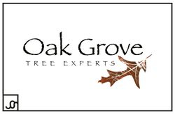Oak Grove Tree Experts Logo