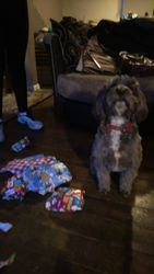 Posing with my Christmas presents!