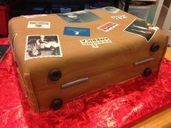 Suitcase details