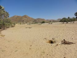 start of the riverbed, & the first of the himba holes