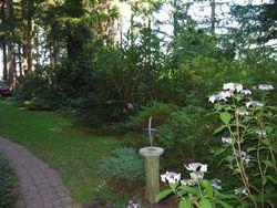 Our garden path