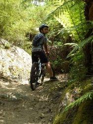 Waipa River Trails