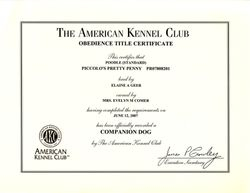 Penny CD title certificate