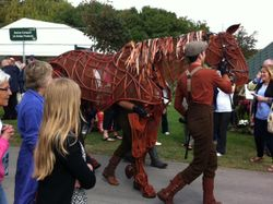 War horse at the front of our stand