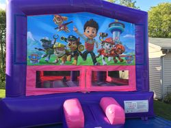 Princess Dream with Paw Patrol Banner