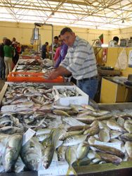Fish Stall at the Daily Market