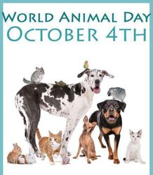 World Animal Day October 4TH