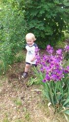 walking in flower bed