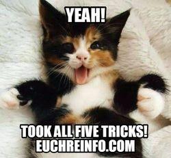 Yeah! 'Took all 5 tricks!