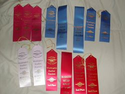 Cascade Show Ribbons