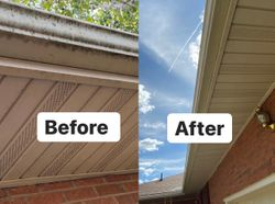 Cleaning gutter fronts, soffit & fascia