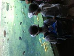 Kayla's School Field Trip May 2013