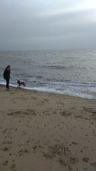 Felixstowe beach on Christmas day