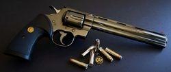 1981 Colt Python