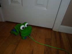 Melissa & Doug Frolicking Frog Pull Toy - $10