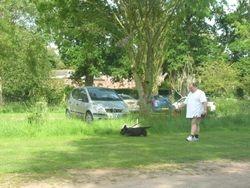 Powderham Castle, Devon - taking the dogs for a walk in the car park