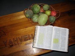 Bible study with Yahveh