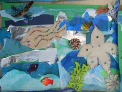 Amazing fish and Starfish