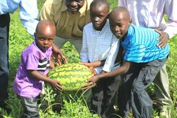 Young farmersand a water melon