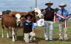 Senior Champion Cow