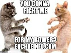 You gonna fight me for my bower?