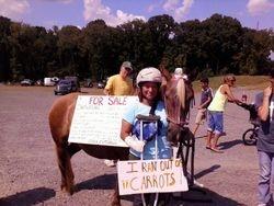 Bad Pony!