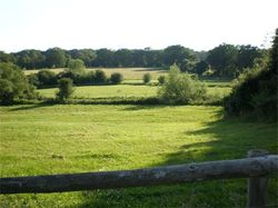 View from the yard to our fields