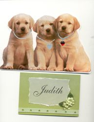 Last Card from Mom and Puppies