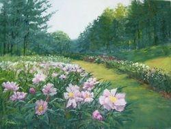 Bailey's Garden