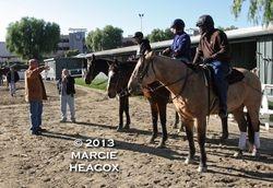 Mandella Pony Riders