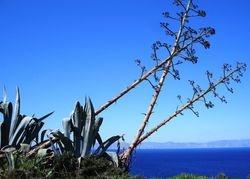 A view to the mesmerising Aegean Sea