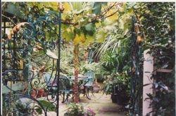 Garden in Notting Hill, 1990