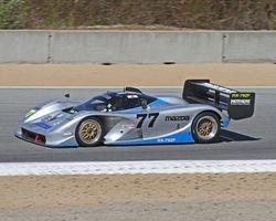 1981-1989 FIA Mfg. Champ. Cars and IMSA 1982-1991 GTO, GTP Cars