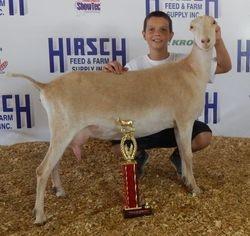 Christian winning Jr. Showmanship HOTODGA show