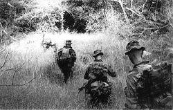 Long Range Patrol Teams: