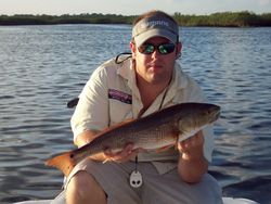 "Capt.Josh caught this 24""redfish on top water"