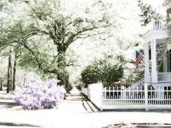 Spring in Cheraw, SC